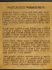 23.4.2010 Historie pratura ofocená z informační tabule [autor: Pavel Vondrášek]