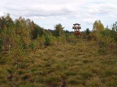 6.10.2012 Rozhledna Soumarský most u Volar umístěna v rašeliništi [autor: Pavel Vondrášek]