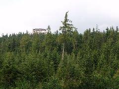 3.9.2012 Rozhledna z přístupové cesty vedoucí od parkoviště nad Lipnem [autor: Pavel Vondrášek]